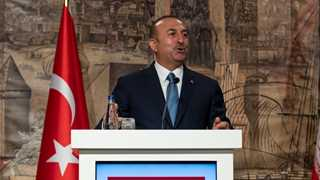 Cavusoglu: Saudis share nothing with us