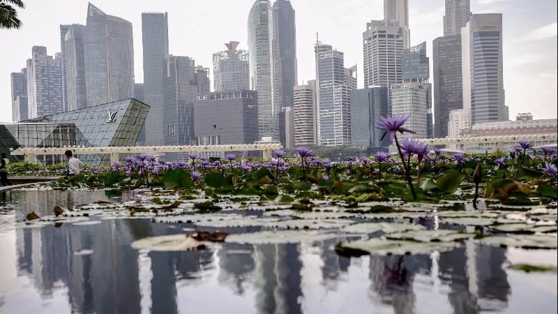 Asia stocks pare gains as investors await U.S. jobs data