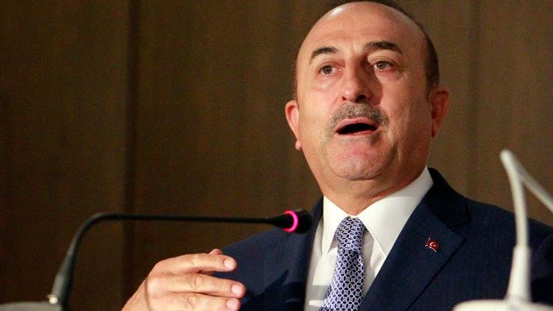 Cavusoglu: Erdogan to discuss Syria with Putin